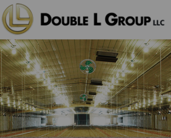 Double L Group LLC